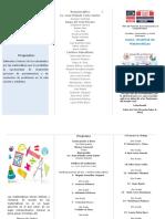 Brochur de Matematicas