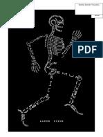 Nama-nama tulang pd gmbr.doc
