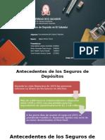 2. Presentacion Seguro de  Deposito (1)
