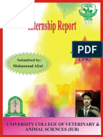 Internship Report Livestock Production research Institute(LPRI) by Dr. Muhammad Afzal