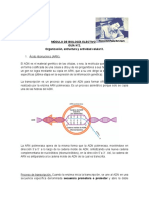 guía 2 biología electivo
