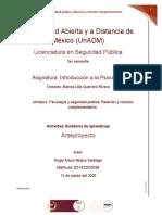 IPS_U4_EA_AAMS..docx