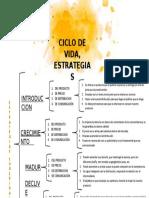 estrategias sugeridas, ciclo de vida del producto