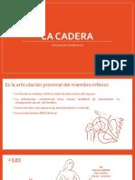 Cadera 2.0.pptx