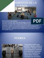 E. FUERZA.pdf