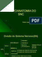 NEUROANATOMIA DO SNC