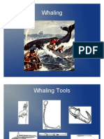 Whaling Illustrations from the Past