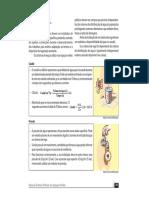 3_Rega_e_Drenagem.pdf