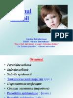 OREIONUL-5591.pdf