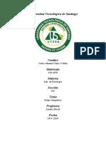 Grupo Sanguíneo.pdf
