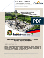 DIPLOMADO EGEH 1ra version.pdf