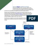 Hardware Asset Management (HWAM) Capability Description.pdf
