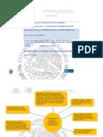 mapa conceptual importancia de la planeacio estrategica y su vinnculacion con la planneacion del recurso humano