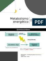 METABOLISMO ENERGÉTICO QUIMIOSSINTESE E FERMENTAÇÃO