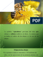 Apicultura.pptx