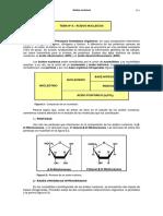 18acidos-nucleicos.pdf