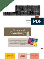 El downsizing.pptx