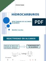 Reactividad_de_ HC_ alifaticos.ppt