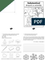 ro2-lc-409-substantivul-brosura-cu-activitati_ver_2.pdf