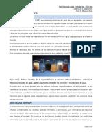 Capitulo 5 (Aditivos) 2020.pdf