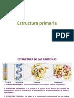 Estructura primaria y secuenciación