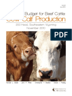 Enterprise Budget for Beef Cattle. Cow-Calf Production - 200 Head
