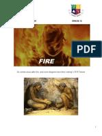 PAT Fire 2020