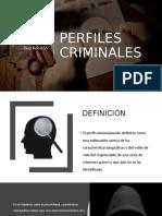 PERFILES CRIMINALES.pptx