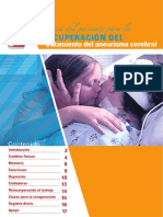 2013-Spanish-BAF_Recovery_Treatment_booklet_Final_ES-US.pdf