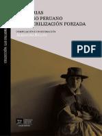 Memorias_del_Caso_Peruano_de_Esterilizac.pdf