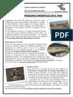 PRINCIPALES PROBLEMAS AMBIENTALES EN EL PERÚ