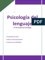 Psicología del lenguaje (APUNTES PDF).pdf