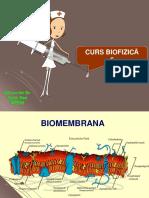 curs 6 AMG biofizica