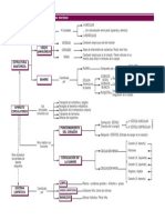 tema8mapacirculatorio.pdf