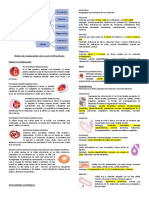Resumen protocolo 3 hemato