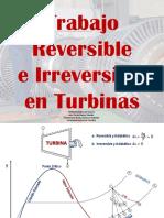 4-Trabajo Reversible.pdf