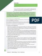 Funciones de la literatura - Ed. Maipue