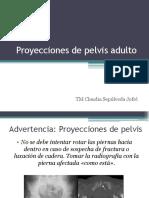 8.1 Proyecciones de pelvis adulto