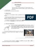 the animals tintun tin tun.pdf