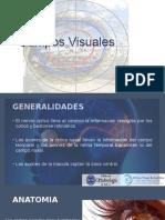 Copia de campos visuales y via optica