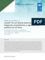 Undp Rblac Cd19 Pds Number5 Es Peru