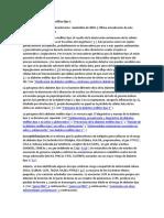 Patogenia de la diabetes mellitus tipo 1