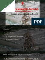 Cap 2. Sistemas.pdf