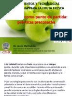 ValJ_Fruyver_2013.pdf