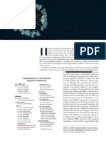 6. Filum Rotifera-Brusca et al., 2019.docx