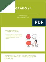 BIOLOGIA+SEPTIMO+N1.pptx