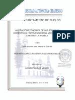 VALORACIÓN ECONÓMICA DE LOS SERVICIOS AMBIENTALES HIDROLÓGICOS DEL MUNICIPIO DE ZONGOZOTLA, PUEBLA