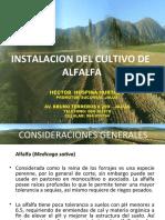 INSTALACION DE ALFALFA