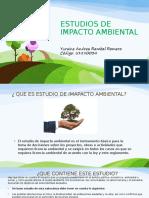 DIAPOSITIVAS DE ESTUDIOS DE IMPACTO AMBIENTAL
