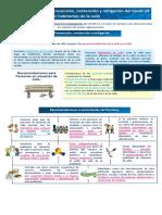 Infografía Habitante de Calle.pdf